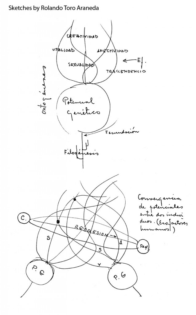 Skizze des Biodanza Theoretischen Models von Rolando Toro Areneda